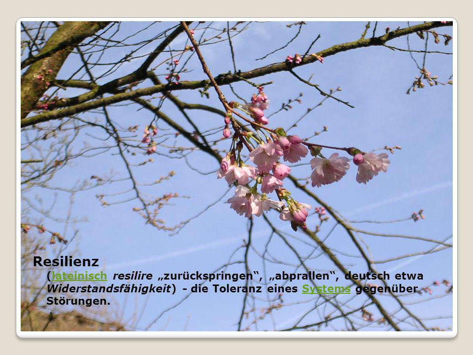 """Resilienz (lateinisch resilire """"zurückspringen , """"abprallen , deutsch etwa Widerstandsfähigkeit) - die Toleranz eines Systems gegenüber Störungen."""