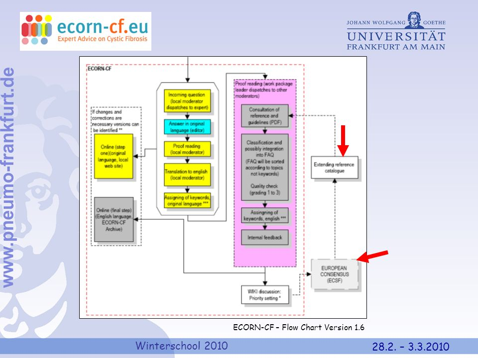 Here I show you very quickly how the system works – please disregard most of teh slide – the only points of interest in teh context of my talk are at teh very right of the diagram: first of all it again stresses the importance of the European Consensus and then it come to the idea of extending the reference catalogue – if no other way exists by including additional European Consensus documents.
