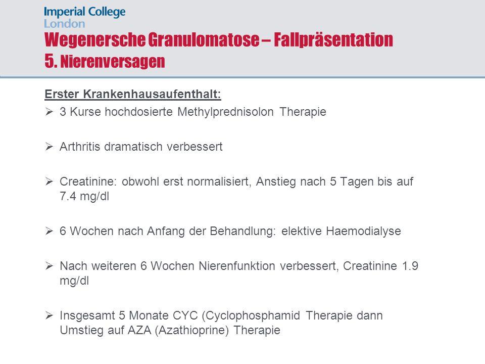 Wegenersche Granulomatose – Fallpräsentation 5. Nierenversagen