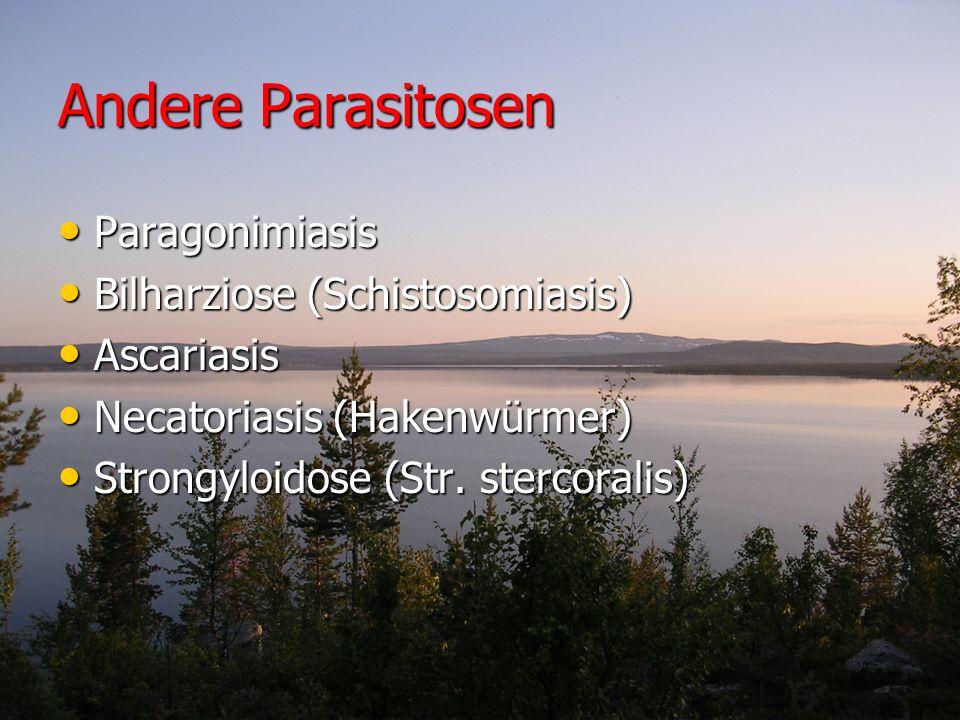 Andere Parasitosen Paragonimiasis Bilharziose (Schistosomiasis)
