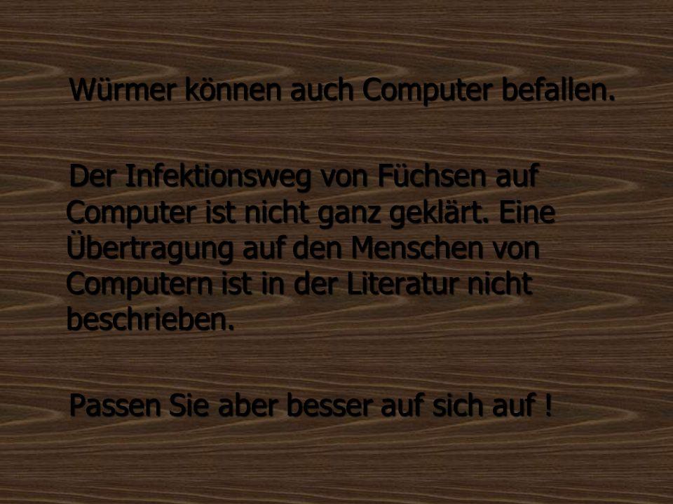 Würmer können auch Computer befallen.