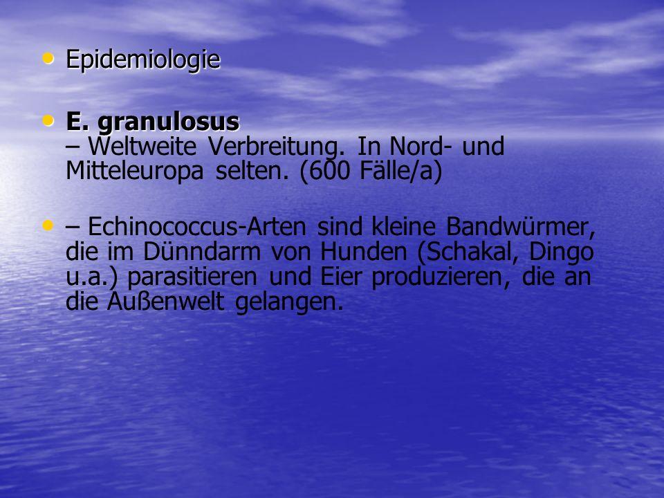 EpidemiologieE. granulosus – Weltweite Verbreitung. In Nord- und Mitteleuropa selten. (600 Fälle/a)