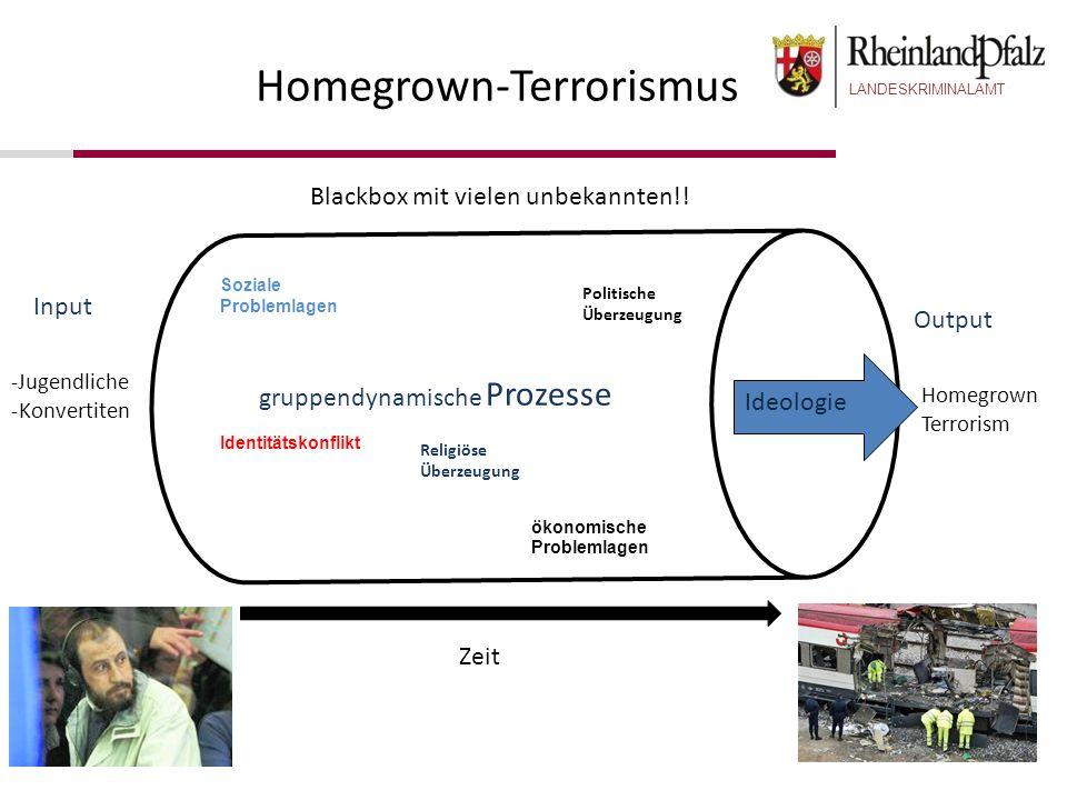 Homegrown-Terrorismus