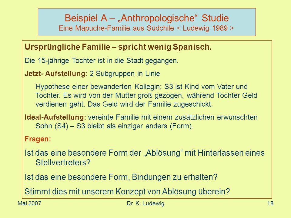 """Beispiel A – """"Anthropologische Studie Eine Mapuche-Familie aus Südchile < Ludewig 1989 >"""