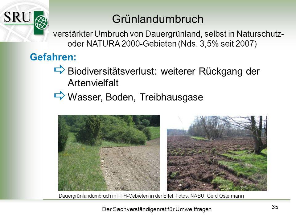 Grünlandumbruch Gefahren: