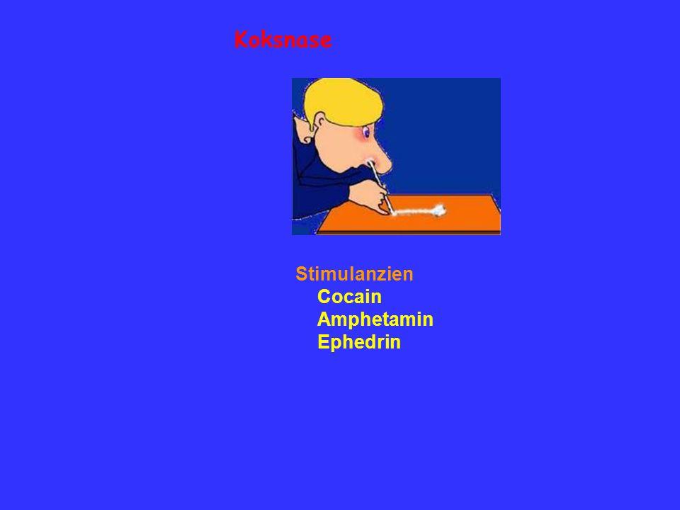 Koksnase Stimulanzien Cocain Amphetamin Ephedrin