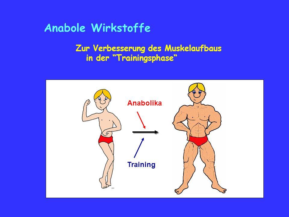 Anabole Wirkstoffe Zur Verbesserung des Muskelaufbaus in der Trainingsphase Anabolika Training