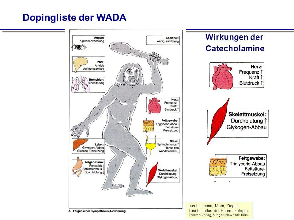 Dopingliste der WADA Wirkungen der Catecholamine