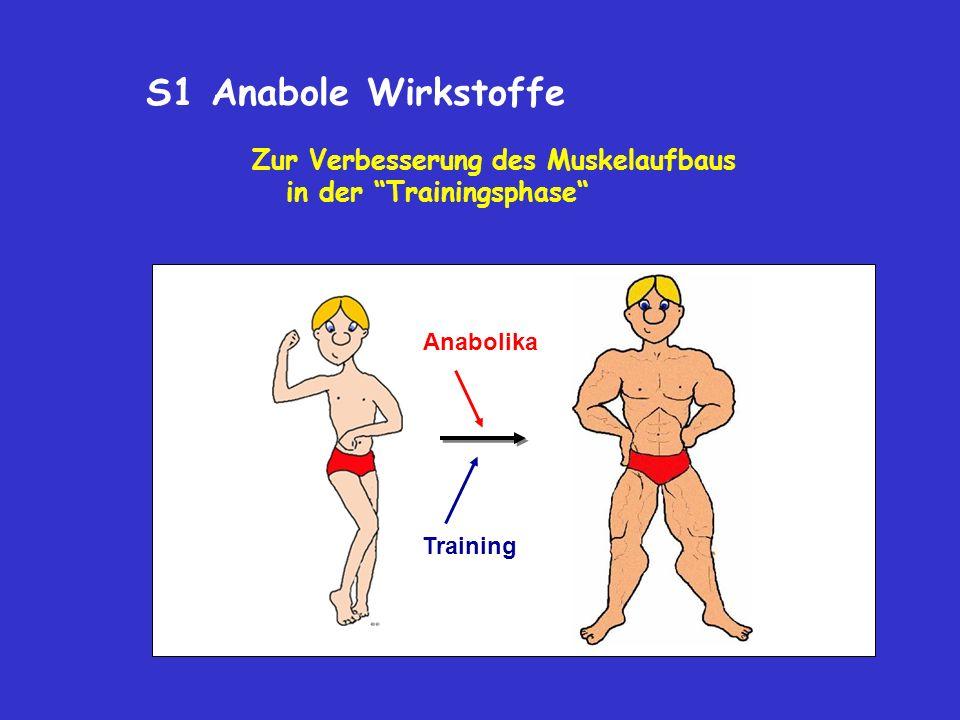 S1 Anabole Wirkstoffe Zur Verbesserung des Muskelaufbaus in der Trainingsphase Anabolika.