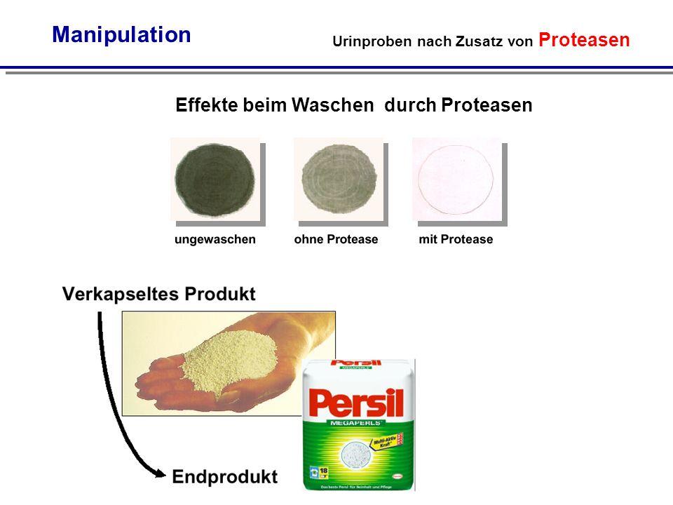 Manipulation Effekte beim Waschen durch Proteasen
