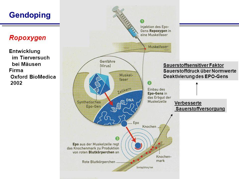 Gendoping Ropoxygen Entwicklung im Tierversuch bei Mäusen Firma