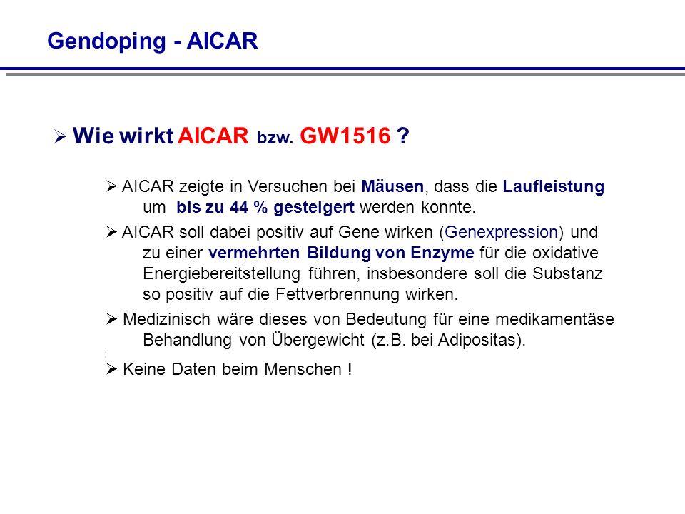 Gendoping - AICAR Wie wirkt AICAR bzw. GW1516
