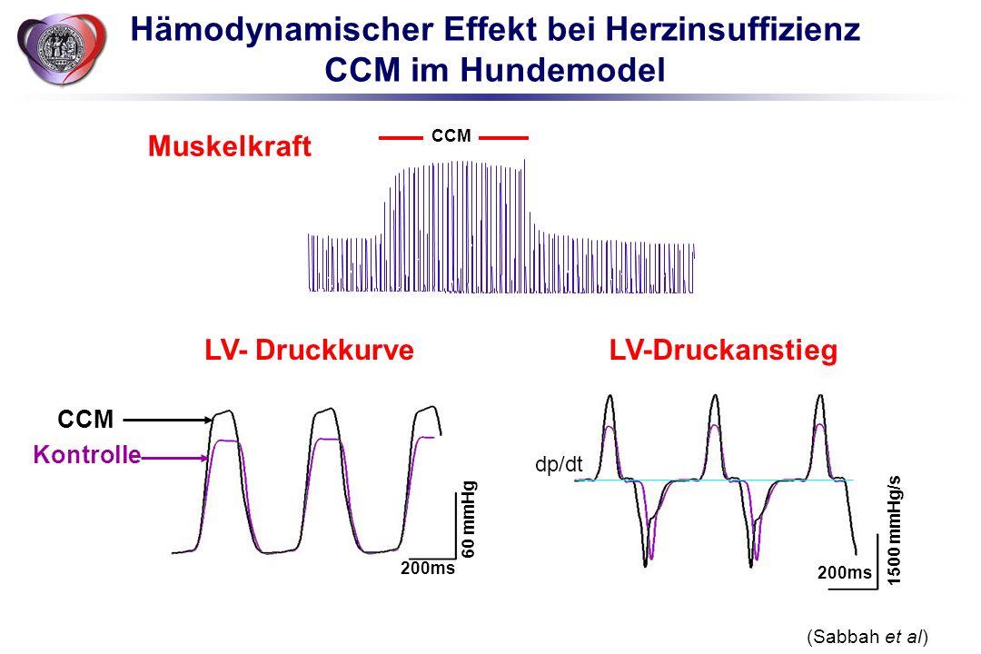 Hämodynamischer Effekt bei Herzinsuffizienz CCM im Hundemodel