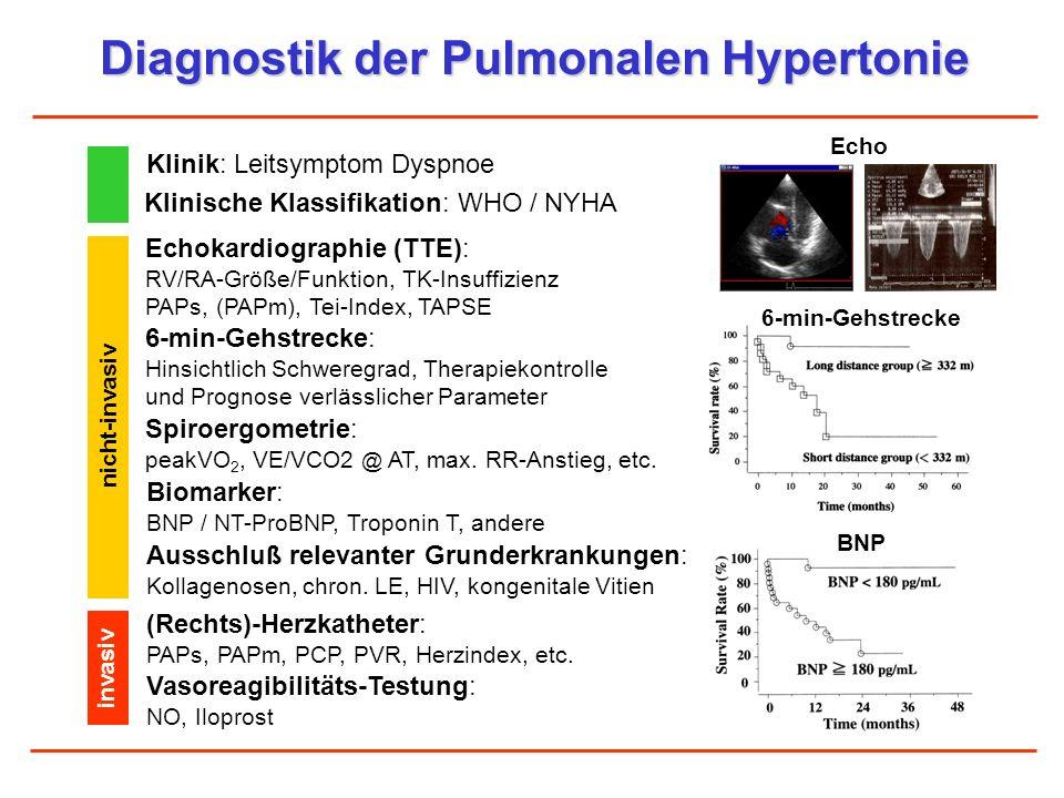 Diagnostik der Pulmonalen Hypertonie