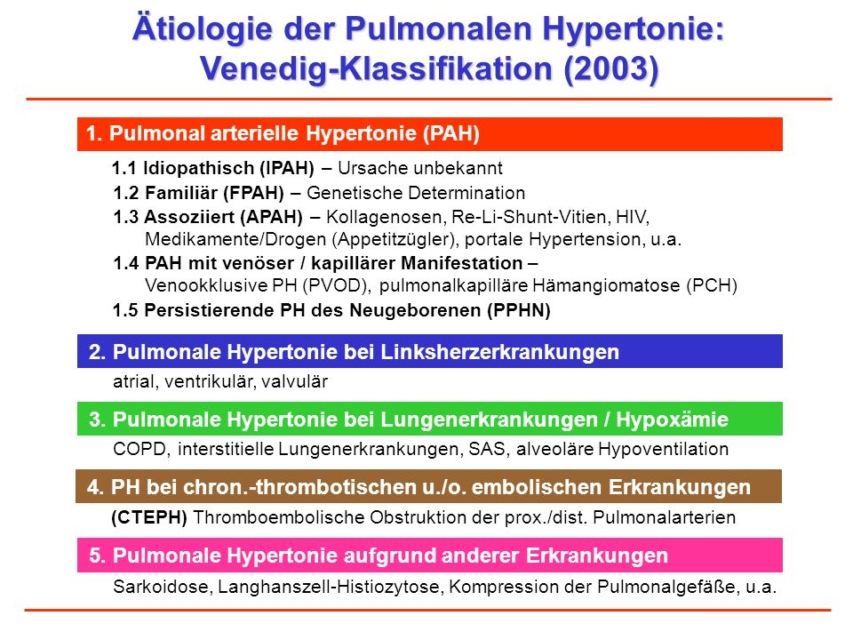 Ätiologie der Pulmonalen Hypertonie: Venedig-Klassifikation (2003)