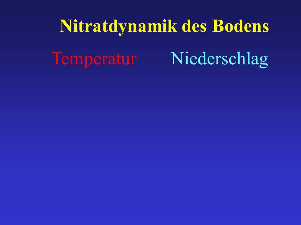 Nitratdynamik des Bodens