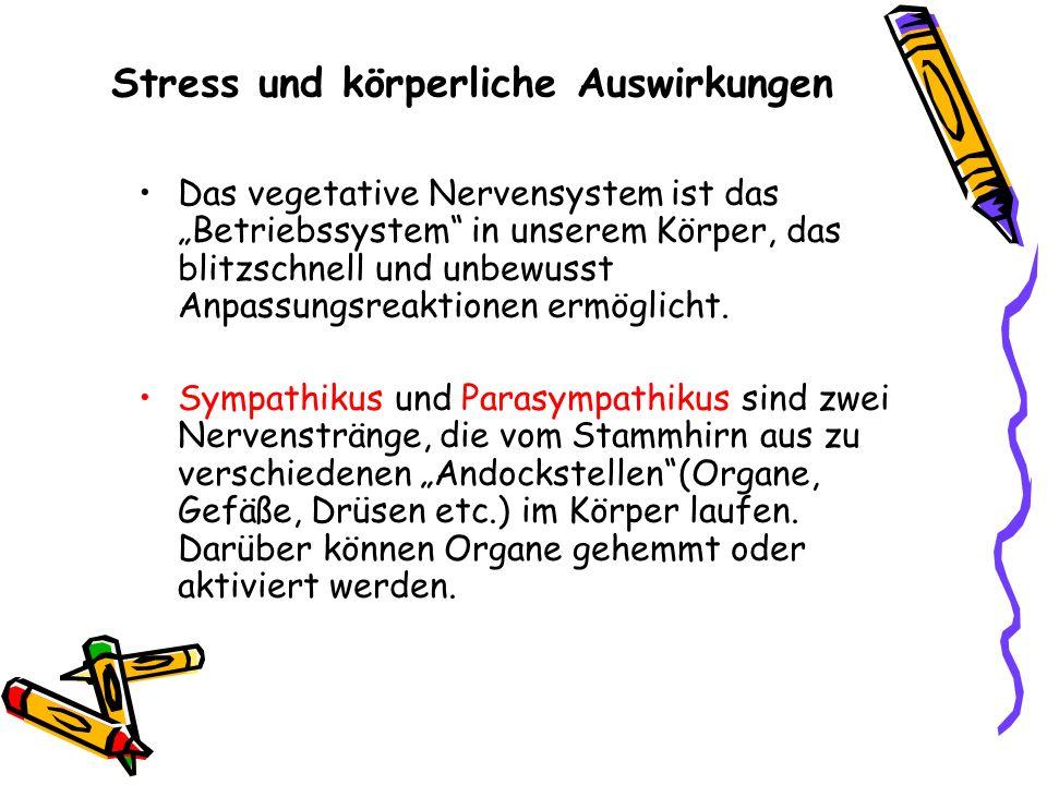 Stress und körperliche Auswirkungen
