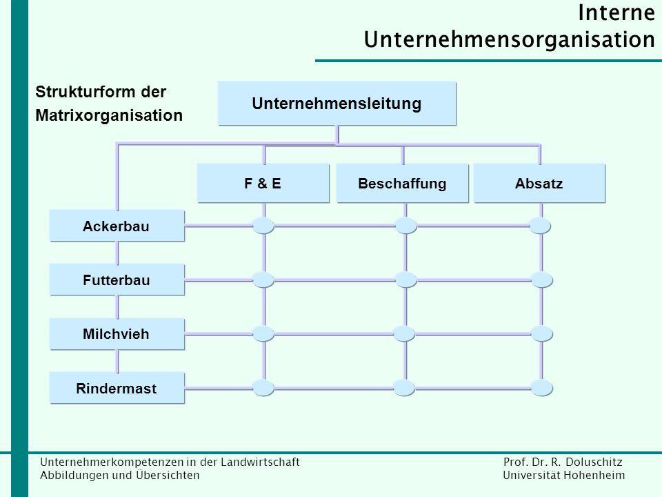 Interne Unternehmensorganisation