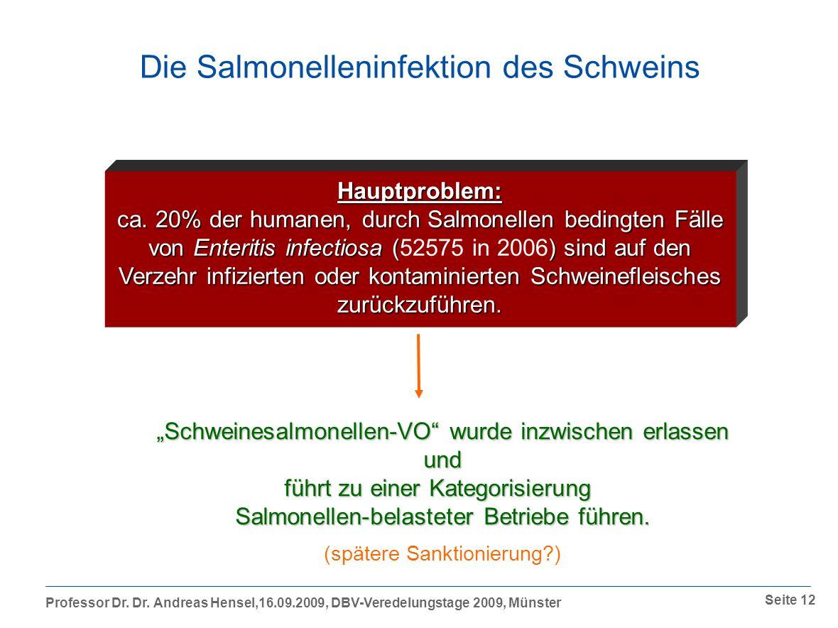 Die Salmonelleninfektion des Schweins