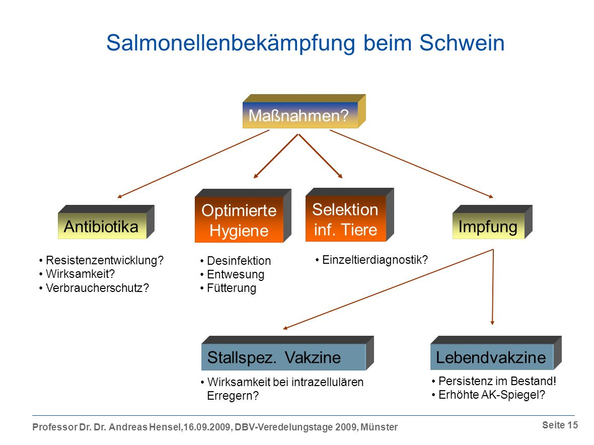 Salmonellenbekämpfung beim Schwein