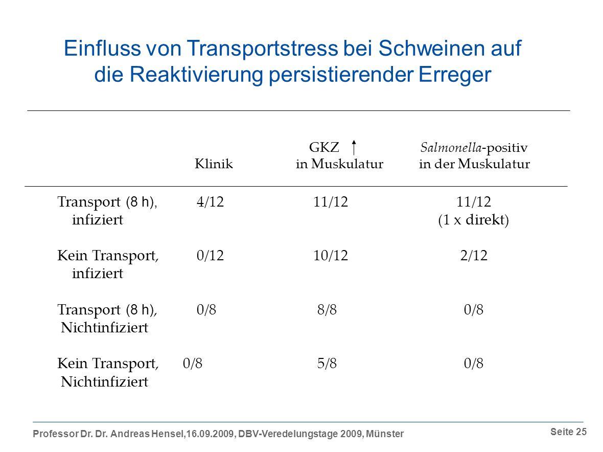 Einfluss von Transportstress bei Schweinen auf