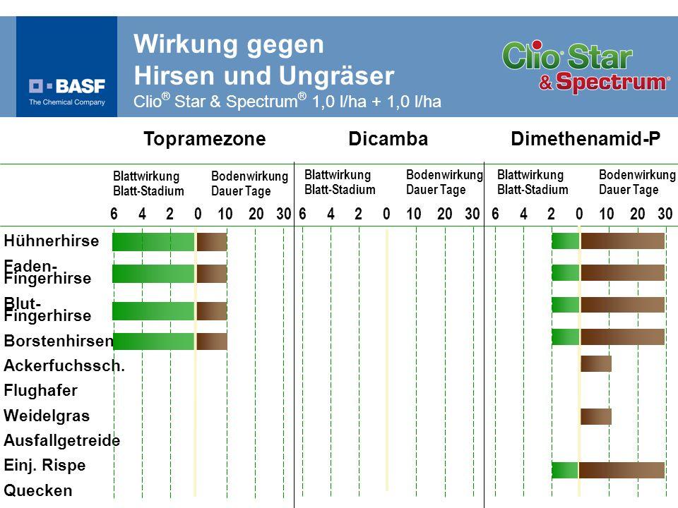 Wirkung gegen Hirsen und Ungräser Clio® Star & Spectrum® 1,0 l/ha + 1,0 l/ha