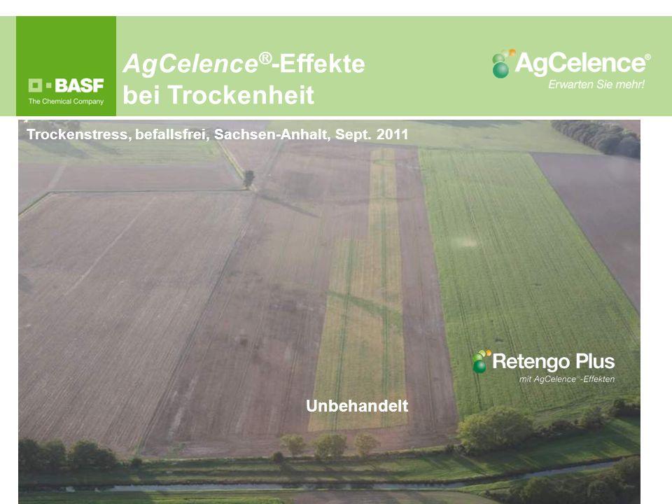 AgCelence®-Effekte bei Trockenheit