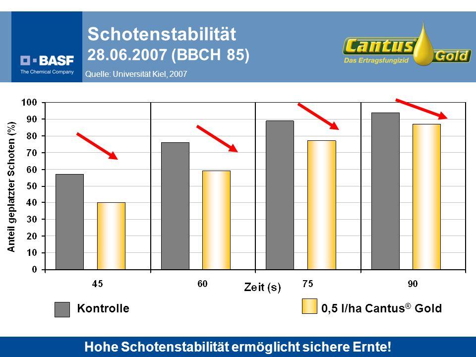 Schotenstabilität 28.06.2007 (BBCH 85)