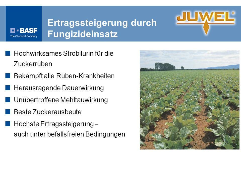 Ertragssteigerung durch Fungizideinsatz