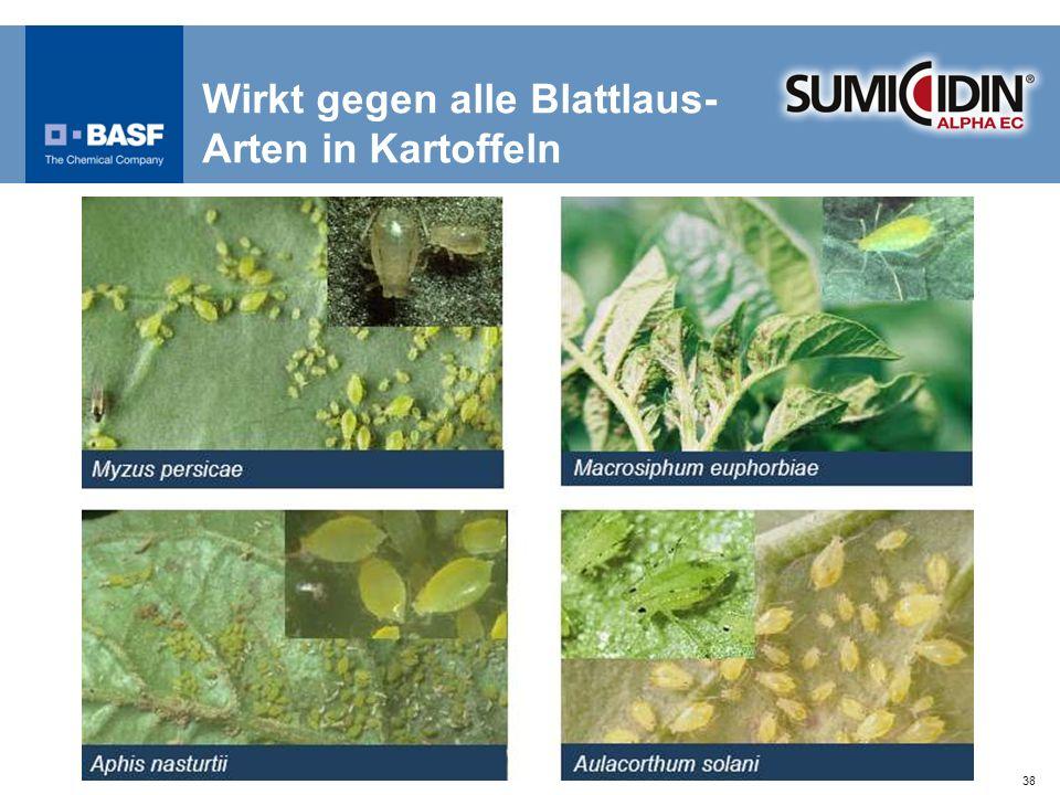 Wirkt gegen alle Blattlaus-Arten in Kartoffeln