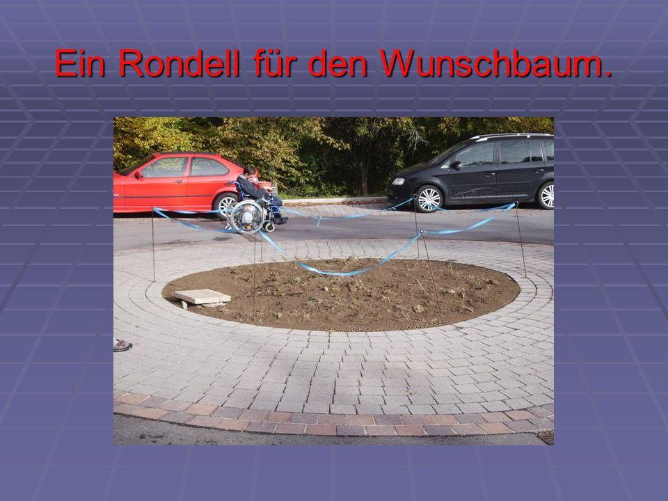 Ein Rondell für den Wunschbaum.