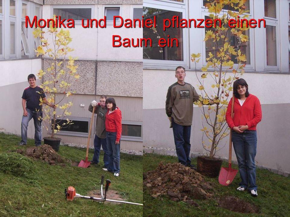 Monika und Daniel pflanzen einen Baum ein