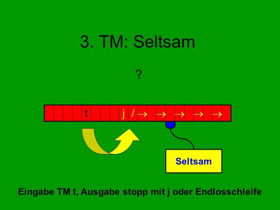Eingabe TM t, Ausgabe stopp mit j oder Endlosschleife