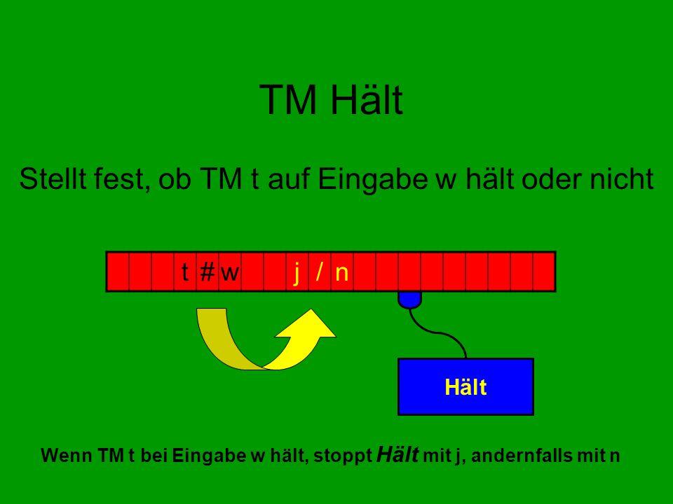 Stellt fest, ob TM t auf Eingabe w hält oder nicht