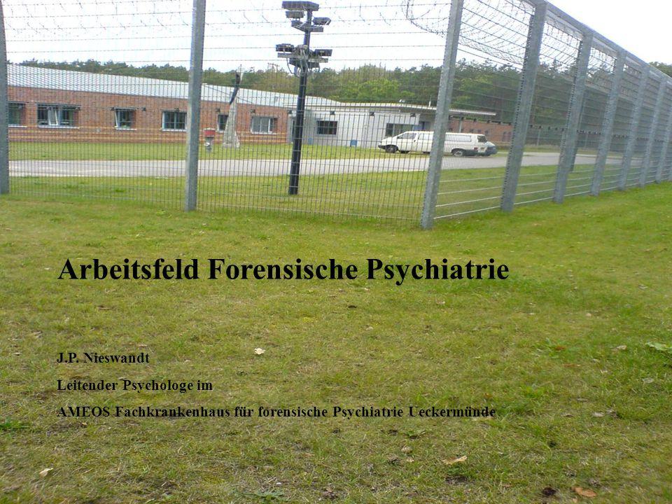 Arbeitsfeld Forensische Psychiatrie