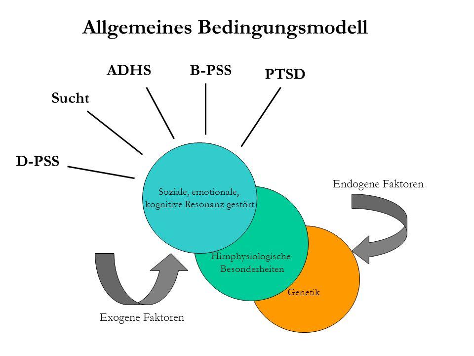 Allgemeines Bedingungsmodell