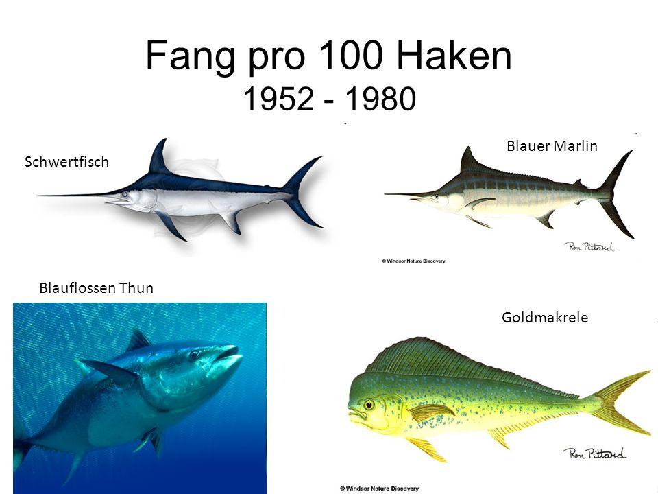 Fang pro 100 Haken 1952 - 1980 Blauer Marlin Schwertfisch