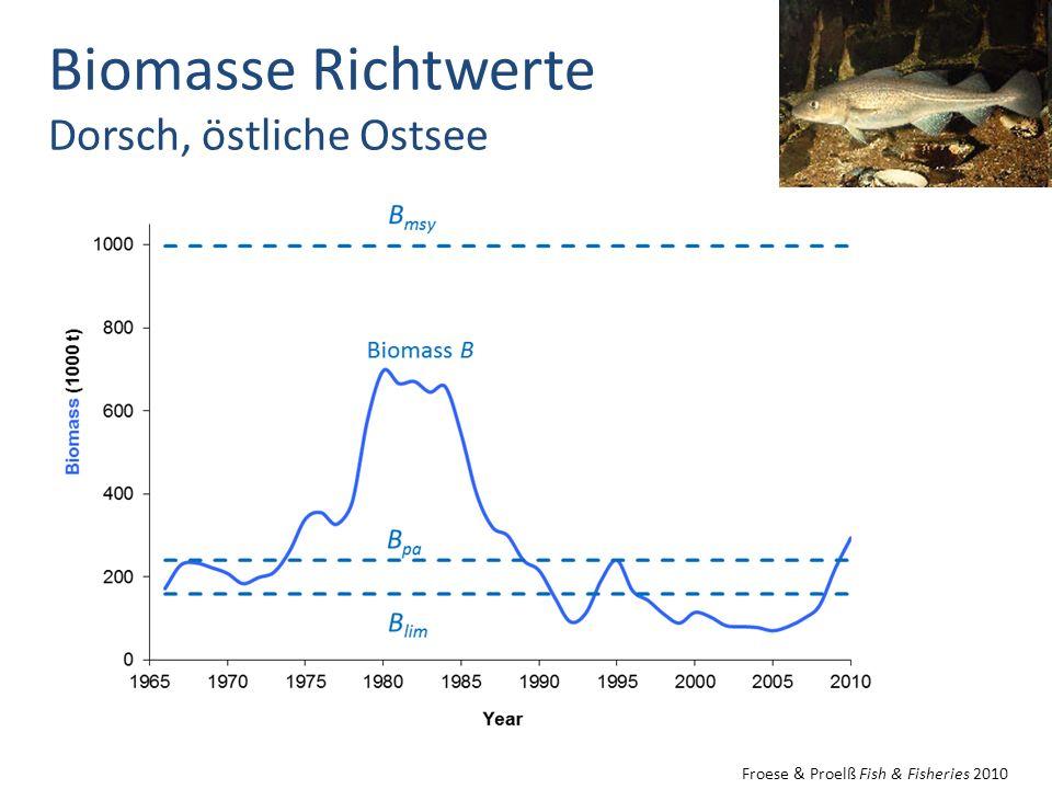 Biomasse Richtwerte Dorsch, östliche Ostsee