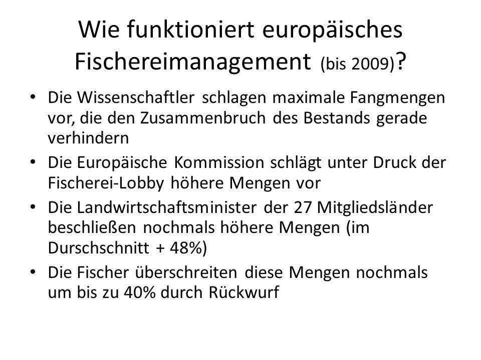 Wie funktioniert europäisches Fischereimanagement (bis 2009)