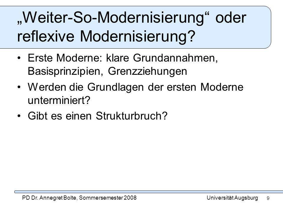 """""""Weiter-So-Modernisierung oder reflexive Modernisierung"""