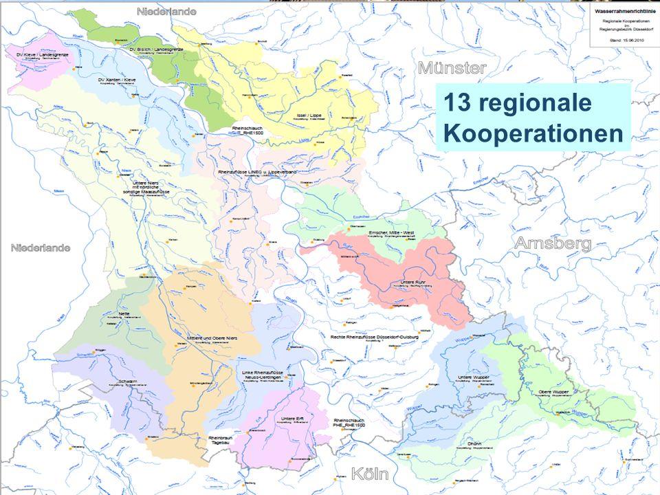 13 regionale Kooperationen