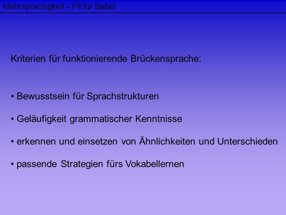 Kriterien für funktionierende Brückensprache: