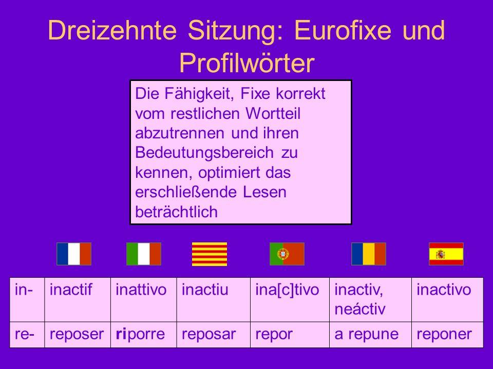 Dreizehnte Sitzung: Eurofixe und Profilwörter