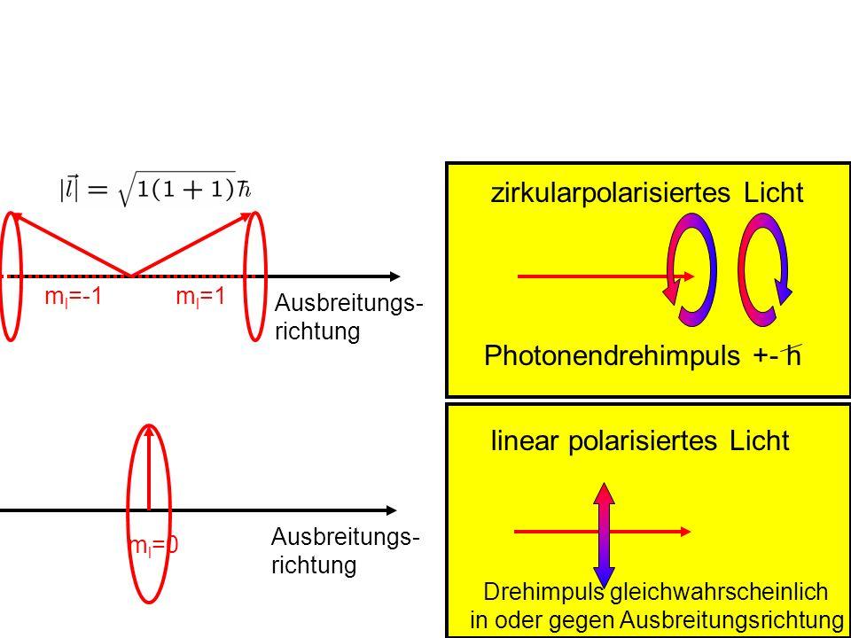 zirkularpolarisiertes Licht