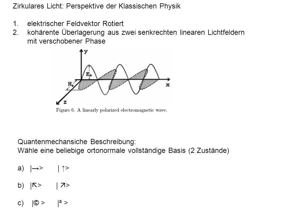 Zirkulares Licht: Perspektive der Klassischen Physik