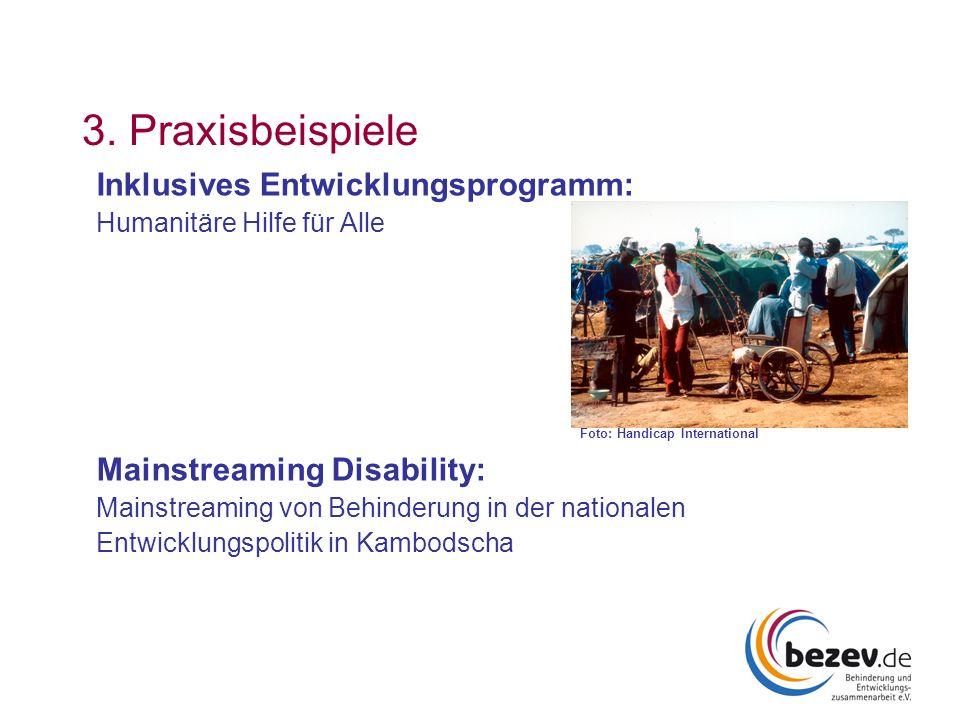 3. Praxisbeispiele Inklusives Entwicklungsprogramm: