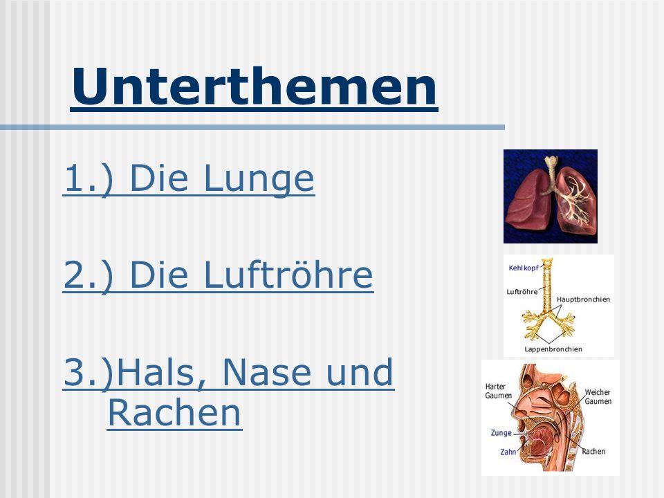 Unterthemen 1.) Die Lunge 2.) Die Luftröhre 3.)Hals, Nase und Rachen