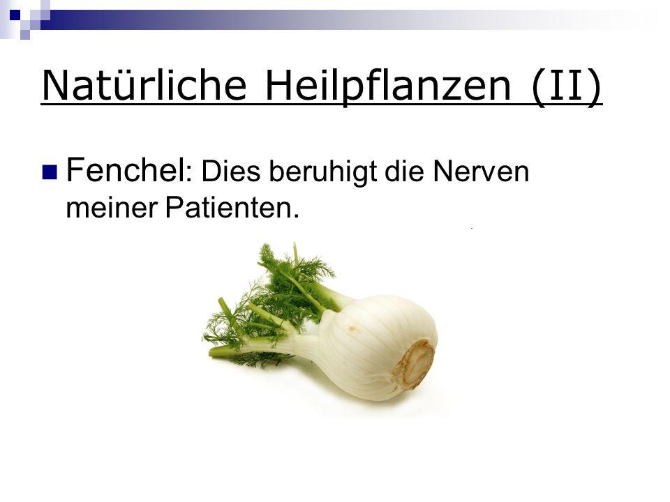 Natürliche Heilpflanzen (II)