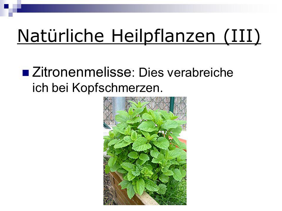Natürliche Heilpflanzen (III)