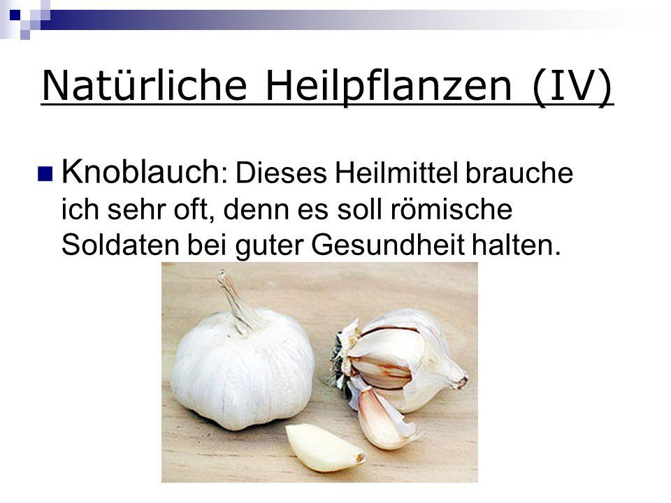 Natürliche Heilpflanzen (IV)